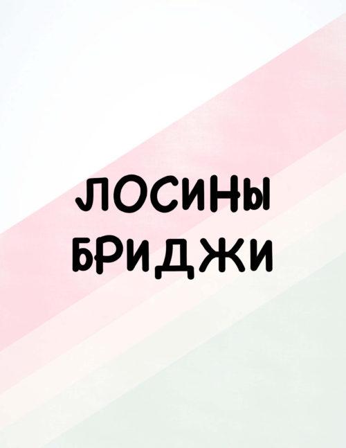 Лосины/Бриджи